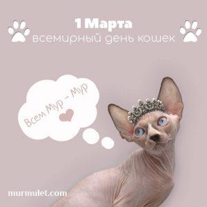 Всемирный день кошек мурмулет